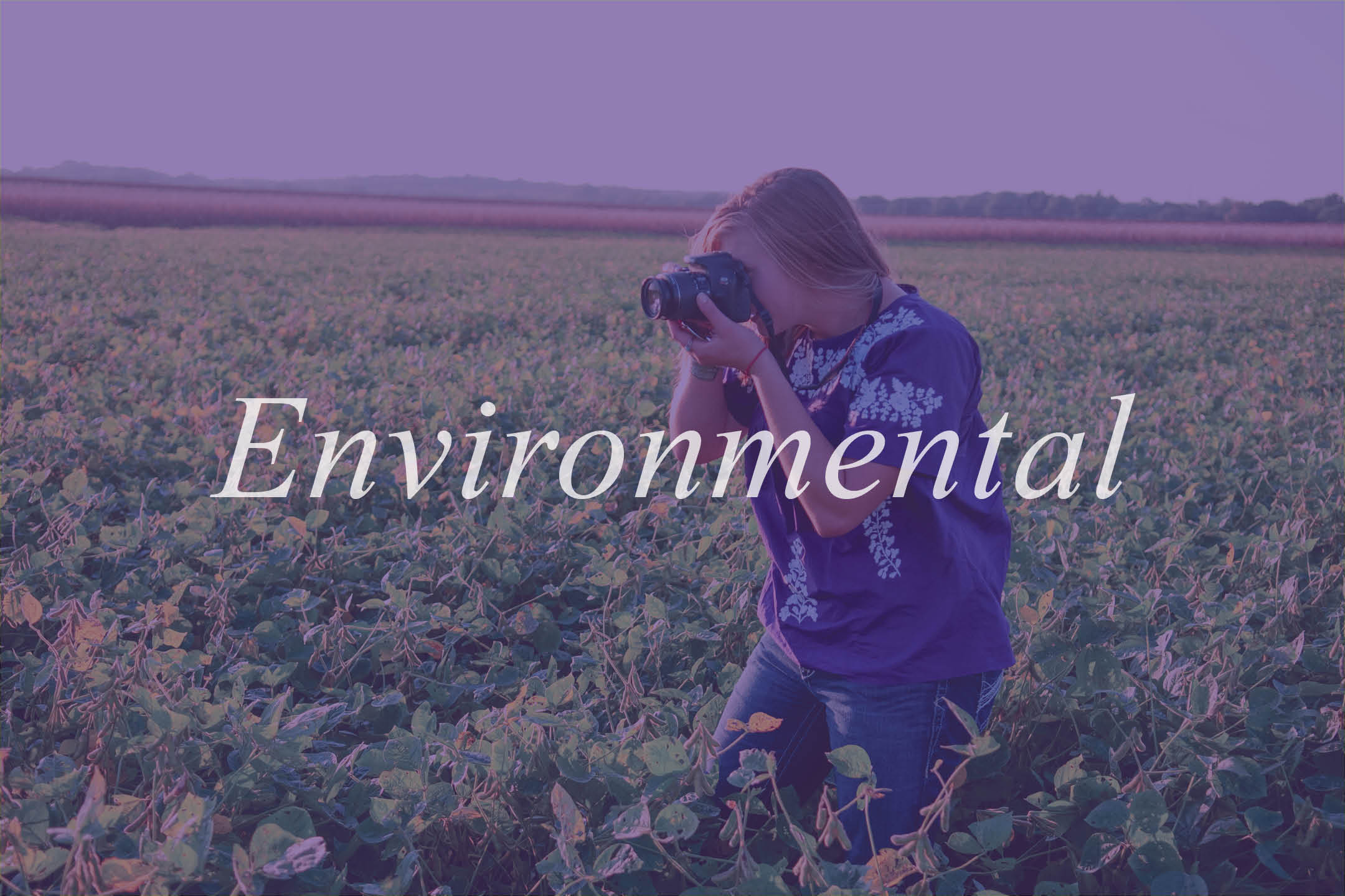 Environmental Option in ACJ Curriculum Guide