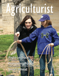 Cover for the Fall 2013 K-State Agriculturist